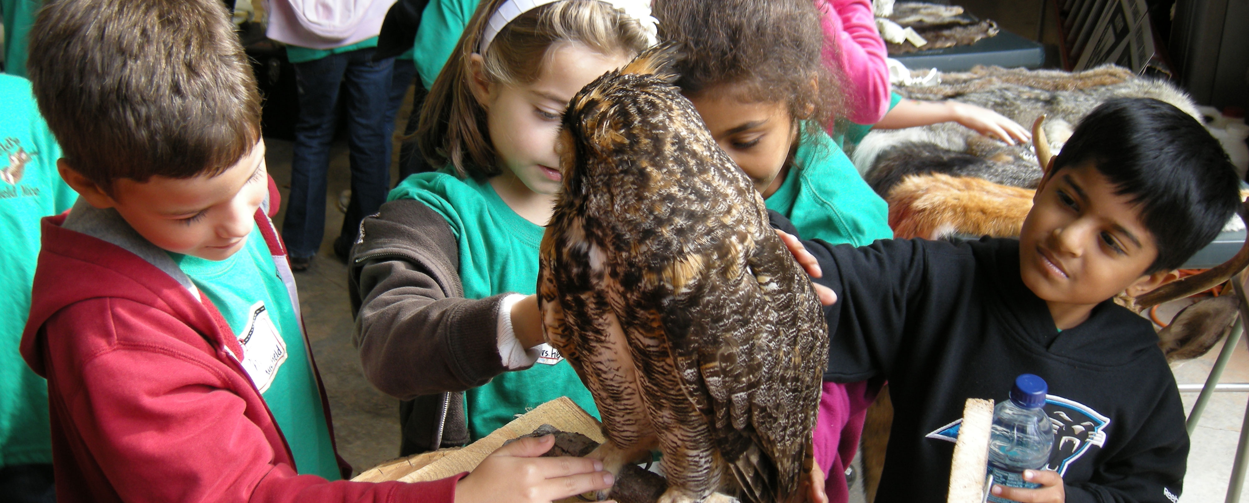 Children learn about Wildlife at Mountain Island Educational State Forest