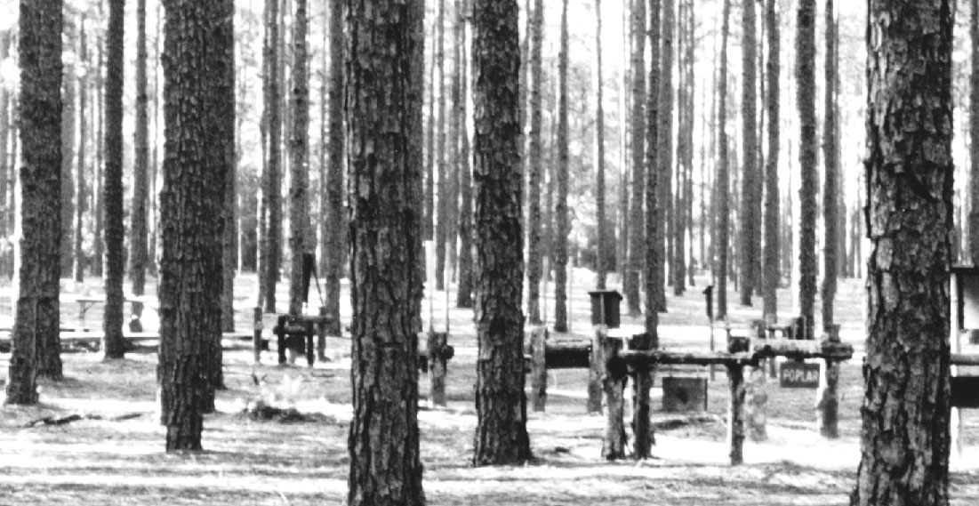 Archive Photo of Turnbull Creek Educational State Forest