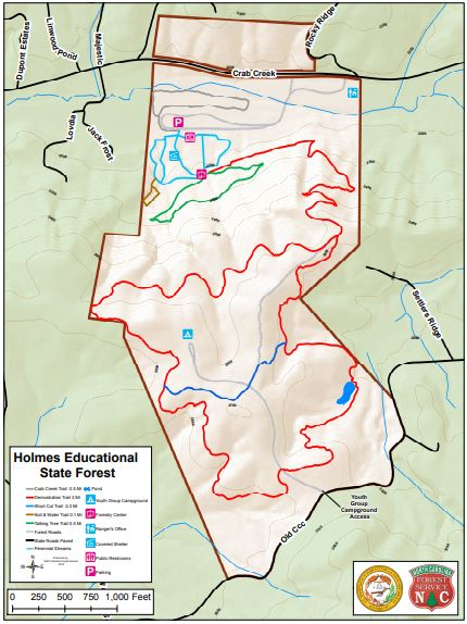 Holmes Educational State Forest on facebook map, el malpais national monument map, blue ridge mountains map, lake james state park map, art loeb trail map, great smoky mountains national park map, blue ridge parkway map, la chua trail map, panthertown valley map, french broad river map, brevard college map, dupont trails nc, dupont national forest waterfalls map, linville gorge map, sliding rock map, daniel boone scout trail map, panem map, new river state park map, conecuh national forest trail map, bighorn national forest trail map,